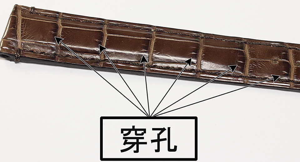 クロコダイルの穿孔